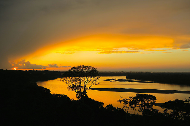 Sunset from an observation tower in the Amazon basin overlooking the Napo River.