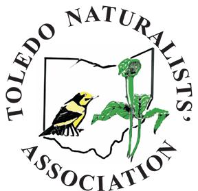 logo final version