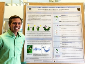 Jacob presenting his poster about the role of auxin in the leaf bend that occurs during the first stage of gall initiation during Life Science Week 2017