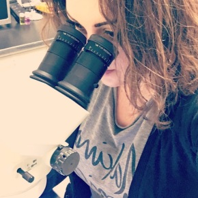 Melanie at the microscope — The new lab is finally setup, experiments can resume!